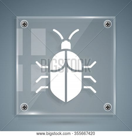 White System Bug Concept Icon Isolated On Grey Background. Code Bug Concept. Bug In The System. Bug