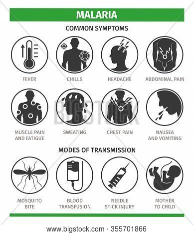 Symptoms And Methods Of Malaria Infection. Template For Use In Medical Agitation.