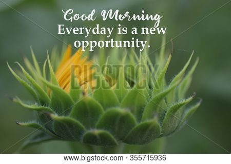 Inspirational Quote - Good Morning. Everyday Is A New Opportunity. With Big Young Sunflower Head Pet