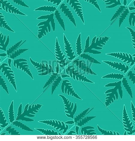 Fern Frond Herbs, Tropical Forest Plant Leaves Vector Wrapping Paper Patterns Set. Bracken Foliage,