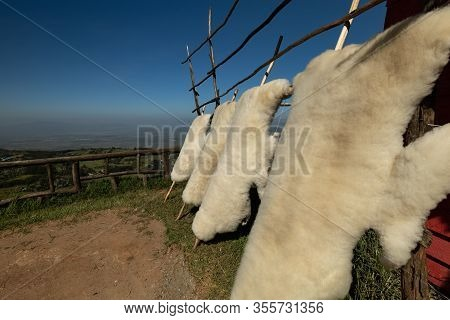 Tanned Sheepskins Hang On A Fence At  A Small Market Along The Highway Overlooking The Great Rift Va