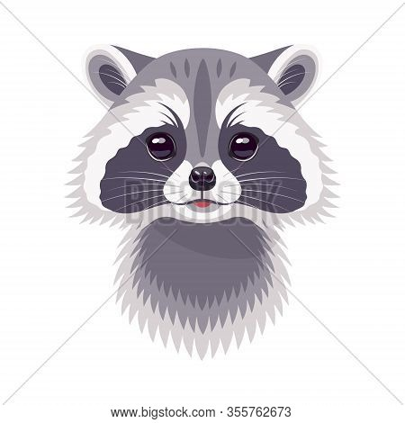 Funny Raccoon Face Or Head Isolated On White Background. Cartoon Cute Furry Animal Vector Flat Illus