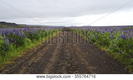 Image Of Country Road In Beautiful Iceland.