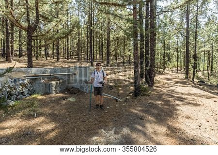 Young Traveler In A Cap With A Backpack And A Camera Near The Huge Power Aqueduct. Pine Tree Forest