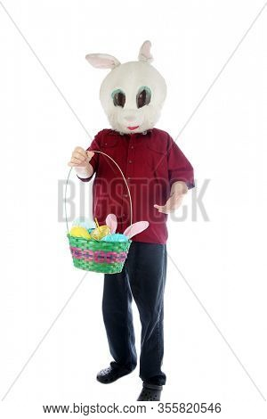 Easter Bunny. A man wears a Easter Bunny Costume and holds a Easter Basket of Treats. Isolated on white. Room for text. Clipping Path. Easter is celebrated world wide every year by happy people. Enjoy