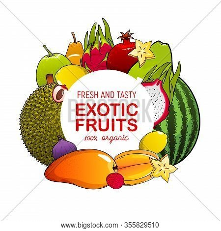 Exotic Fruits Icon With Tropical Berries Frame. Vector Mango, Lemon And Fig, Lychee, Jackfruit And C