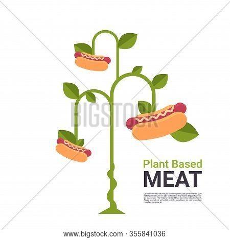 Plant Based Vegetarian Hot Dog Tree Beyond Meat Organic Natural Vegan Eco Food Concept Copy Space Ve