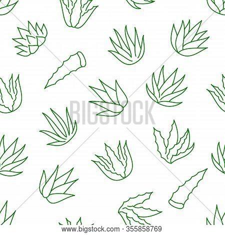 Aloe Vera Background Vector Photo Free Trial Bigstock