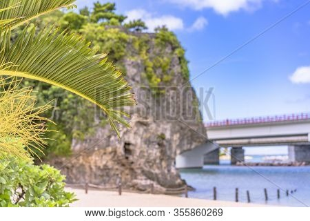 Palm Tree On The Sandy Beach Naminoue Topped By A Huge Rock With A Shinto Shrine At The Top Of A Cli