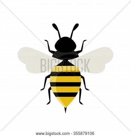 Bee Isolated On White Background. Wasp Flat Icon. Insect Concept. Wildlife, Entomology. Vector Stock