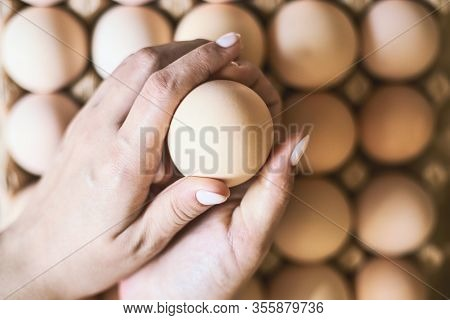 Eggs In The Cardboard. Top View. Fresh Eggs From The Farm. Organic Egg Production. Chicken Egg Indus