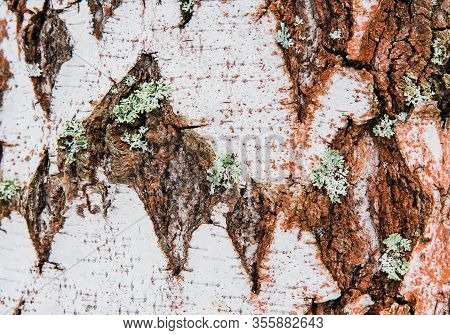 Unusual Natural Background