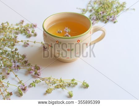 Thyme Tea And Thyme Leaves. Infusion Made From Thyme Leaves. Medicinal Herb Thymus Vulgaris. The Con