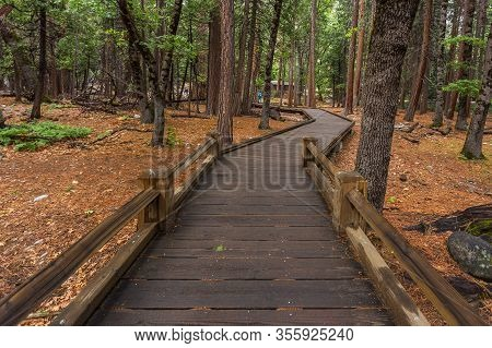 Wooden Path In The Yosemite Valley, Yosemite National Park In Sierra Nevada Mountain, California, Us
