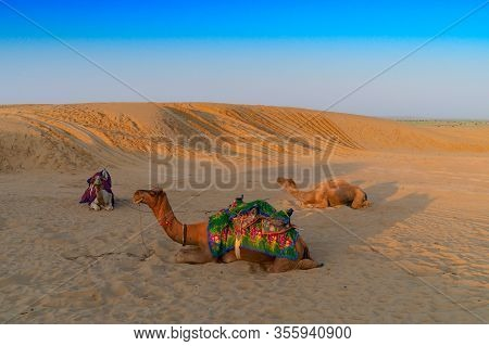 Camels With Traditioal Dresses, Are Waiting For Tourists For Camel Ride At Thar Desert, Rajasthan, I