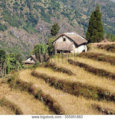 Beautiful House In Nepal And Terraced Fields, Khumbu Valley, Solukhumbu, Nepal Himalayas