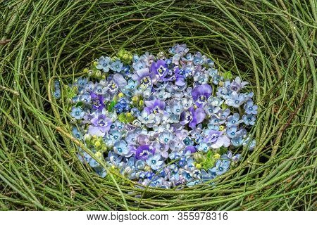 Beautiful Springy Oval Arrangement Of Blue And Purple Flowers With Pansy (viola Wittrockiana), Forge