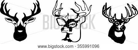 Deer Icon Isolated On Background Walking, White, Wild, Wilderness, Wildlife, Zoo