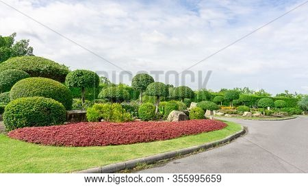 Topiary Garden Style, Asphalt Road In Gardens With Hedge Round Shape Of Bush And Shrub, Decoration W