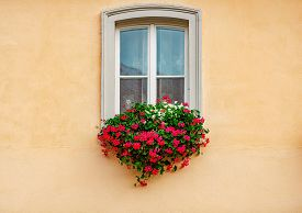 White Old Wooden Window With Beautiful Flowers, Yellow Wall Of Building. Architecture And Travel In
