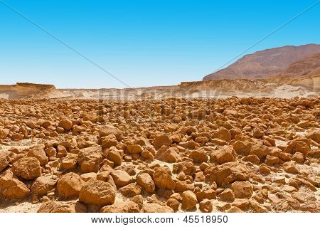 Stones In The Desert
