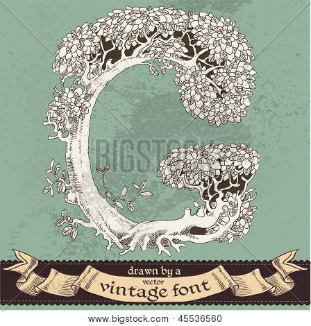 Magic grunge forest hand drawn by a vintage font - G