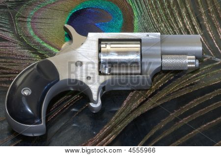 A Tiny .22 Caliber 5 Shot Revolver.