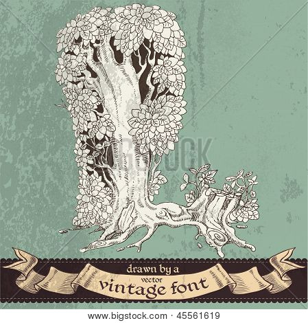 Magic grunge forest hand drawn by a vintage font - L