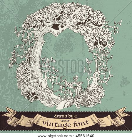 Magic grunge forest hand drawn by a vintage font - O