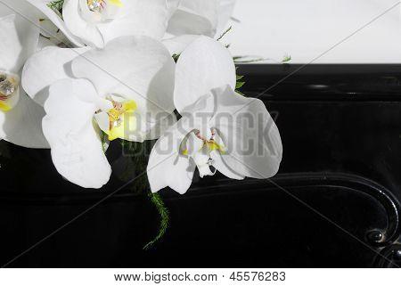 Wedding Bouquet On Black Piano