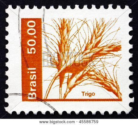 Postage Stamp Brazil 1982 Wheat, Triticum, Cereal Grain