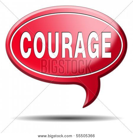 courage and bravery the ability to confront fear pain danger uncertainty and intimidation fearless poster