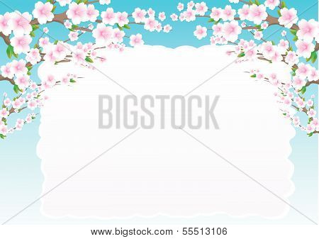 blossom tree background