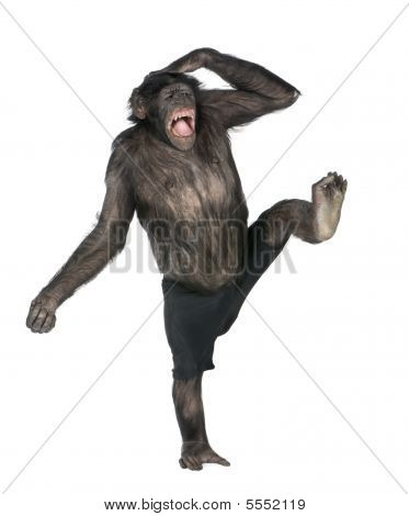 Monkey Monkeying  And Screaming On One Foot