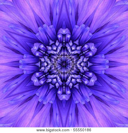 blaue konzentrischen Blume Zentrum. Mandala kaleidoskopische Gestaltung