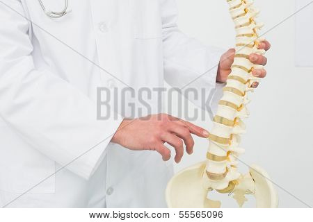 Extreme close-up mid section of a male doctor with skeleton model