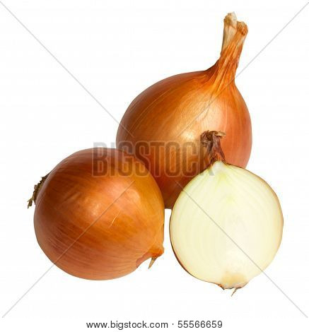 Fresh Golden Onions Isolated On White Background