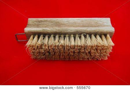 Isolated Brush