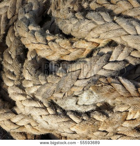 Rough aging nautical rope. Textured background.          poster