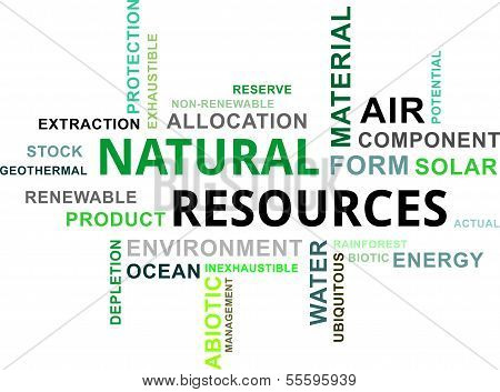 natural resources Natural resources definition, a naturally occurring source of wealth, as land or water see more.