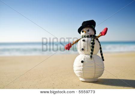 Snowman At The Beach