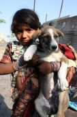 A little beggar girl from India wearing torn sari(Indian clothing) proudly holding her pet dog. poster