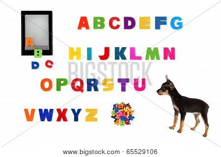 Alphabet electronic book and toy-terrier puppy on white background. poster