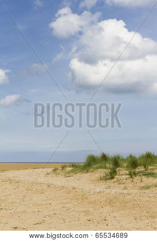 Deserted Beach With Dune And Marram Grass