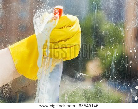 Hand Cleans Home Window From Spray Bottle