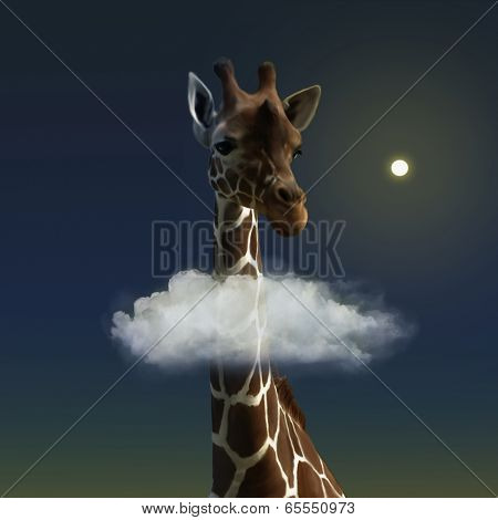 The sweet giraffe and the cloud.