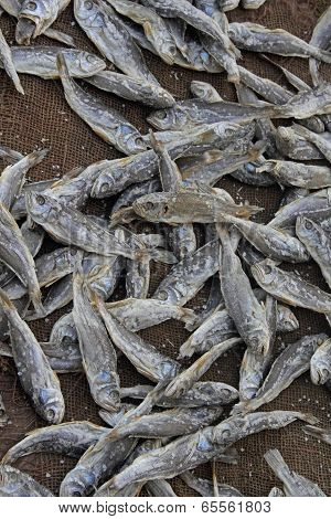 Fish Spread For Drying