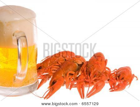 Crawfishes And Mug Of Beer