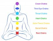 Seven main chakras  - Crown Chakra (purple), Third Eye Chakra (blue), Throat Chakra (light blue), Heart Chakra (green), Solar Plexus Chakra (yellow), Sacral Chakra (orange) and Root Chakra (red) - beaded along the corresponding body regions poster