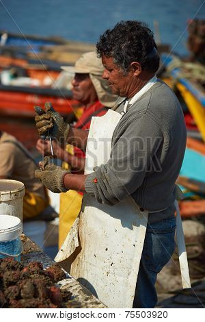 Fisherman at work